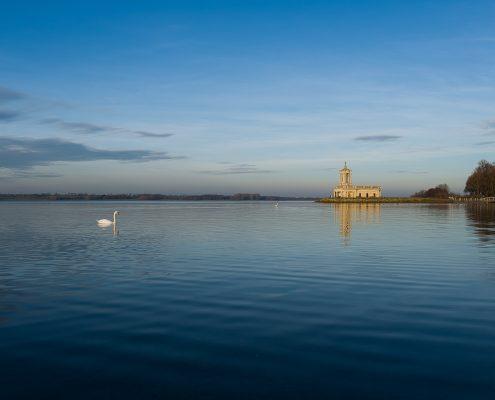 Swans and Normanton Church at Rutland Water