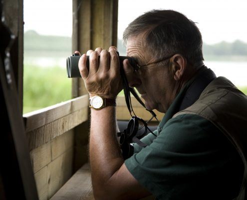 Birdwatcher at Rutland Water