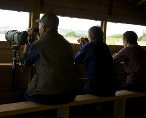 Birdwatchers at Rutland Water