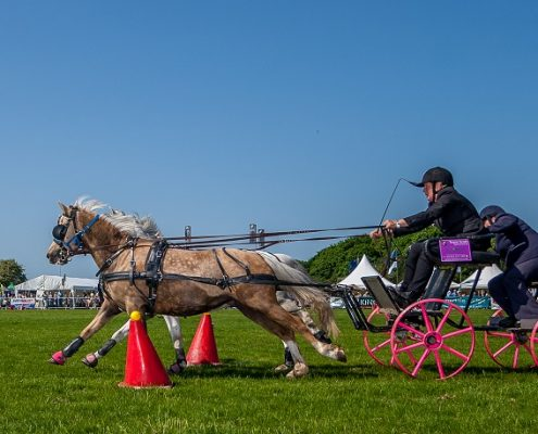Scurry Event at the Rutland County Show